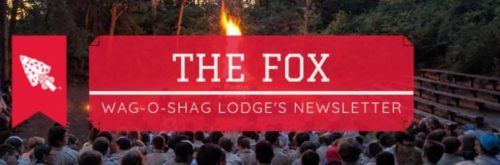 The Fox - Header 4